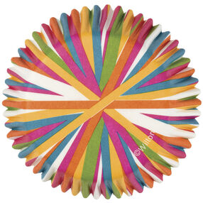 Color Wheel Cupcake Liners