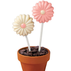 Flower Pot Lollipop Display
