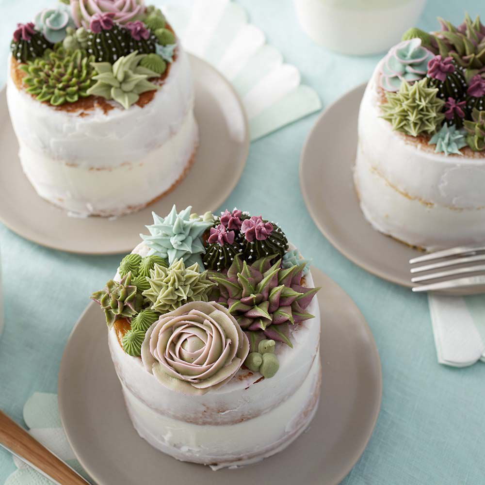 Birthday Cupcakes Designs: Stunning Succulent Cakes