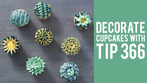 How to Decorate Cupcakes with Tip 366