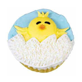 Happy Bird-day Cupcakes