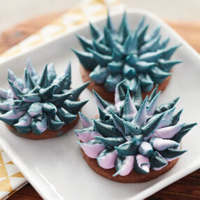 Blooming Succulent Cookies