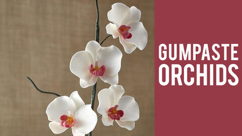 How to Make Gumpaste Orchids