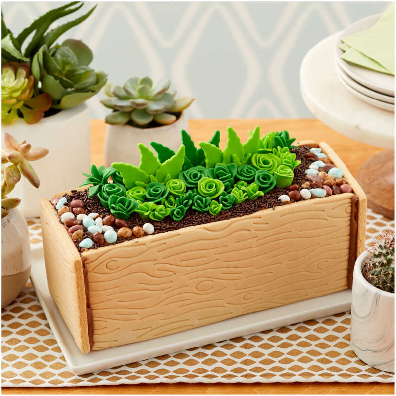 Tasty by Fondant Succulent Garden Cookie Kit image number 4