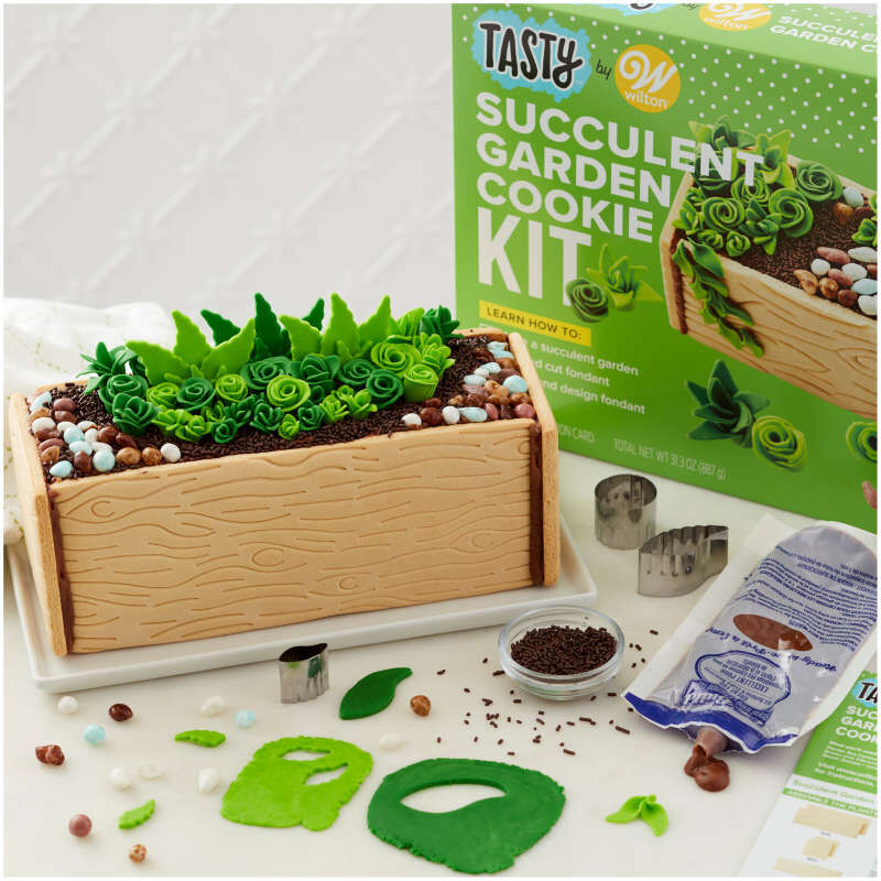 Tasty by Fondant Succulent Garden Cookie Kit image number 3
