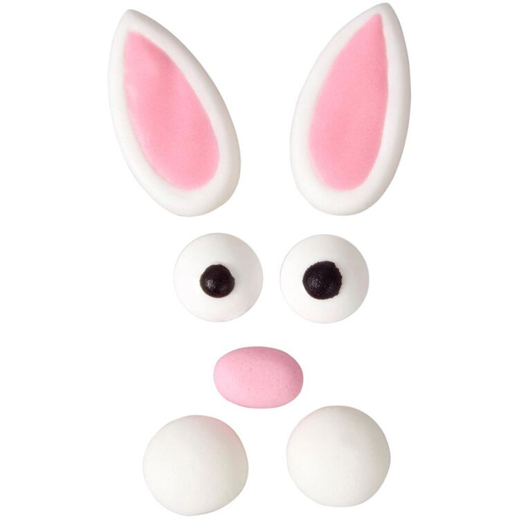 Easter Bunny Face Icing Decorations Kit