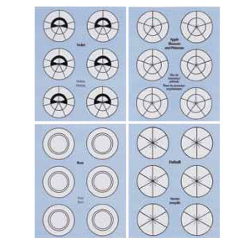 Flower Nail Templates