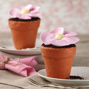 Big Blossom Mini Flower Pot Cakes