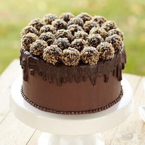 Truffle-Topped Cake