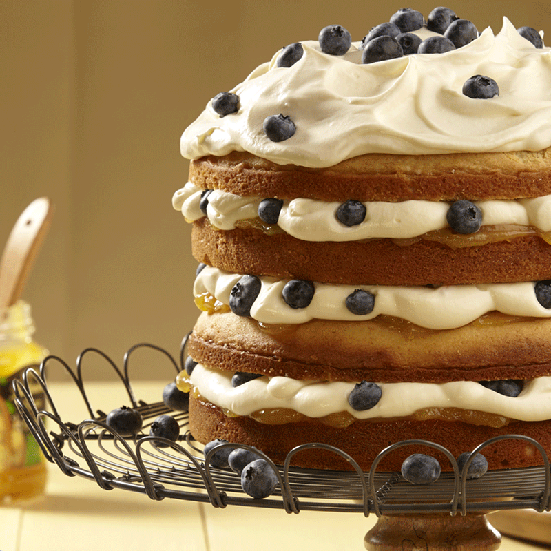 Lemon Blueberry Torte image number 2