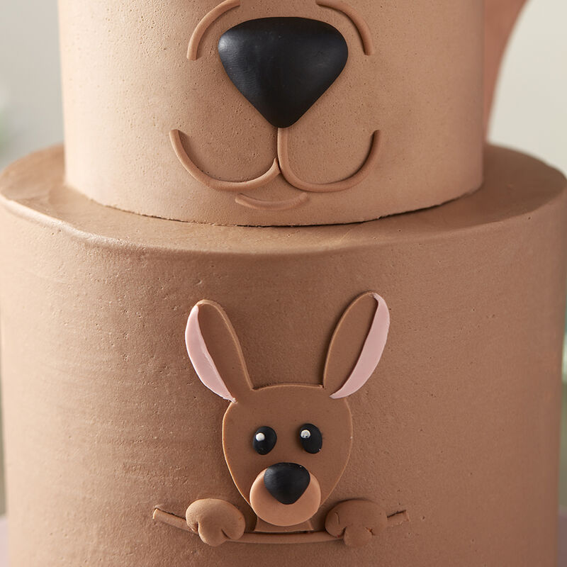 Kangaroo and Joey cake- Close-up of Joey image number 2