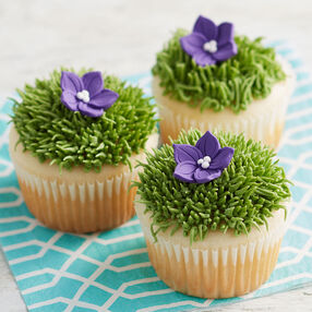 Learn To Bake And Decorate Wilton