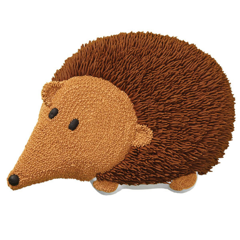 Hairy Hedgehog Cake image number 0