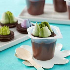 Succulent-Topped Pudding Cups