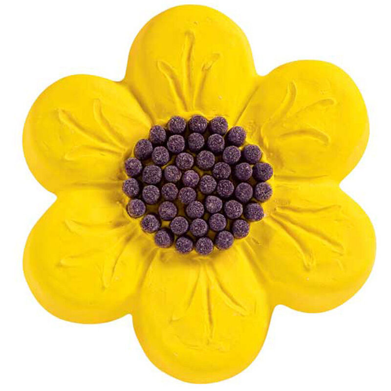 Hello Yellow Daisy! Cake image number 0