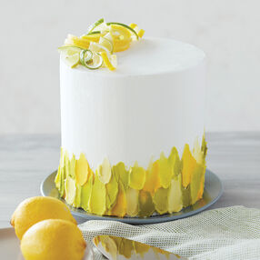 Swish of Citrus Spatula Painted Cake