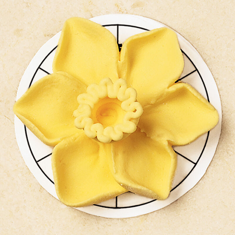 Daffodil image number 0