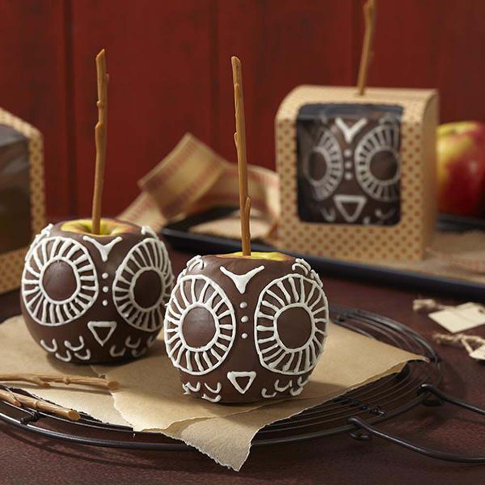 Owl Chocolate Dipped Candy Apples Wilton