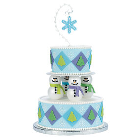 A Winter Delight Cake