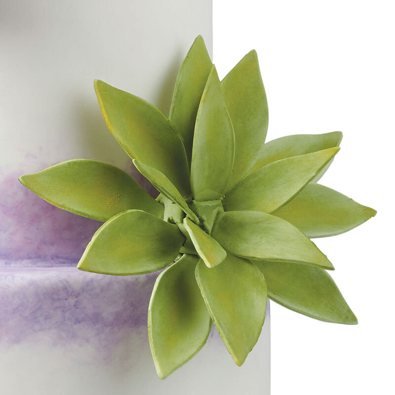 Wired Agave image number 0