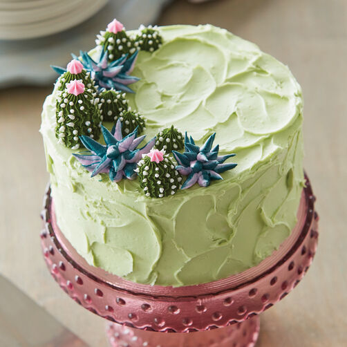 Succulent Cake Decorations