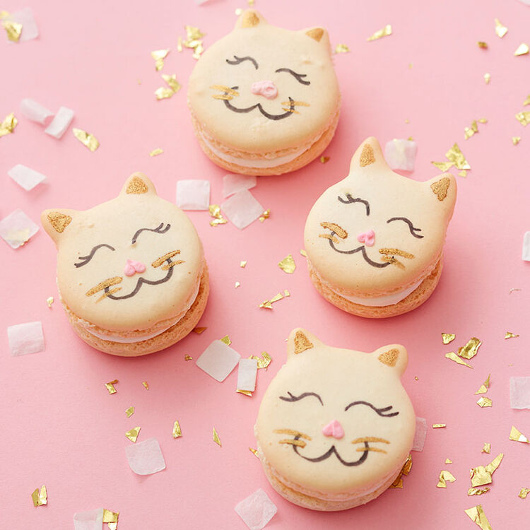 Cat macarons with faces drawn with edible markers and little ears