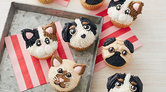 Cupcakes decorated to look like cat and dog faces